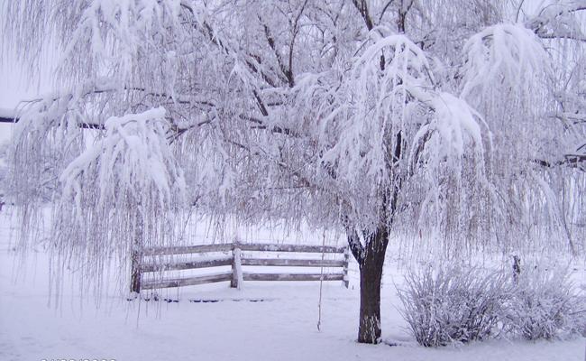Alcuni consigli da Hera per affrontare l'inverno nel modo migliore ...